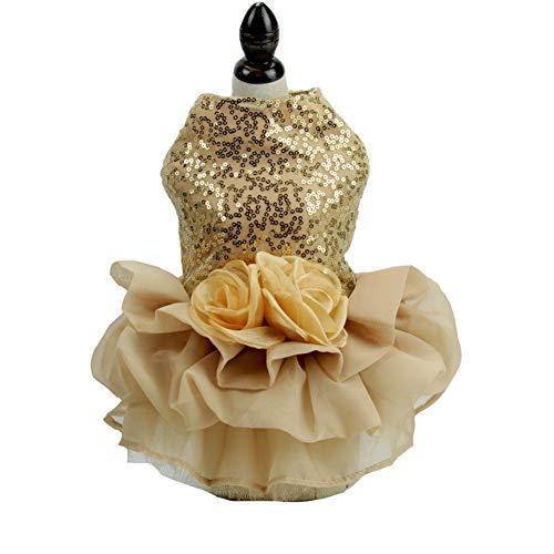 Hund Hochzeitskleid Gestickte Blumen Spitze Prinzessin Hund Fancy Style Pet Tutu Kleidung für Hunde Welpen,Gold,XL - Gold Gesticktes Spitze