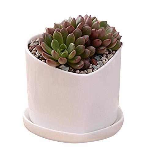 Weiß Keramik Töpfe, yousun 10,2cm Deko Mini Keramik Blume Sukkulente Blumentopf/Cactus Pflanztopf mit Keramik Tablett -