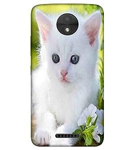 For Motorola Moto C Plus white cat ( white cat, beautiful cat, nice cat, cute cat ) Printed Designer Back Case Cover By TAKKLOO