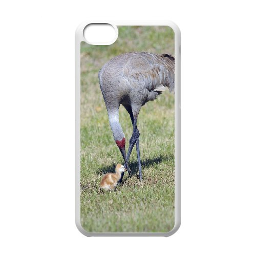 iPhone 5C Phone Case Red-crowned Crane CI795533