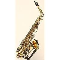 Original Wester Symphonie Bosque Diseño Saxofón Alto Saxofón Viejo, Oro/Plata, incluye maletín rígido de lujo y accesorios, Nuevo
