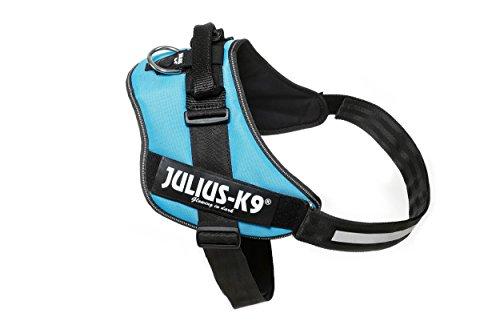 Julius-K9, 16IDC-AM-4, IDC-Powergeschirr, Hundegeschirr, Größe: 4, aquamarine -