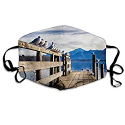 Anti Dust Face Mask,Reusable Warm Windproof Mouth Mask,Seagulls on Old Wooden Jetty Lakeside Hills in Bavaria Landscape Picture