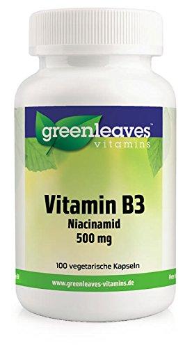 Vitamin B3 Niacinamid 500 mg