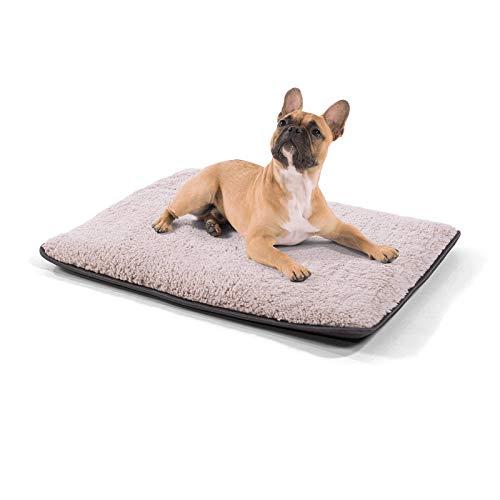 brunolie Finn kleine Hundedecke, waschbar, hygienisch und Rutschfest, Hundematte passend für die Rückbank im Auto in Beige, Größe S