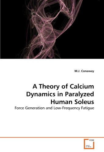 a-theory-of-calcium-dynamics-in-paralyzed-human-soleus