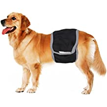 Pañal higiénico para pero macho de BXT, para la zona de orina, almohadilla para el entrenamiento de incontinencia para cachorros