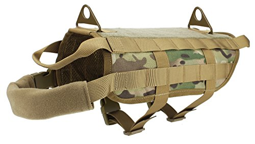 Alexsport nylontraining caza Tactical Molle Chaleco
