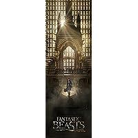 Pyramid International Fantastic Beasts Teaser Door Poster, Paper, Multi-Colour, 53 x 158 x 1.3 cm preiswert