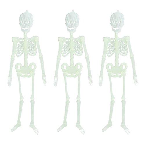 BESTOYARD Halloween Leuchtend Skelett Requisiten Halloween Spuk Schädel Skelett Rahmen Wandbehang Dekor 30 cm 3 stücke