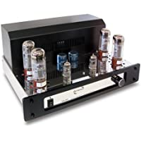 Dynavox VR-80E - Amplificador a válvulas mono, color negro y cromo (importado