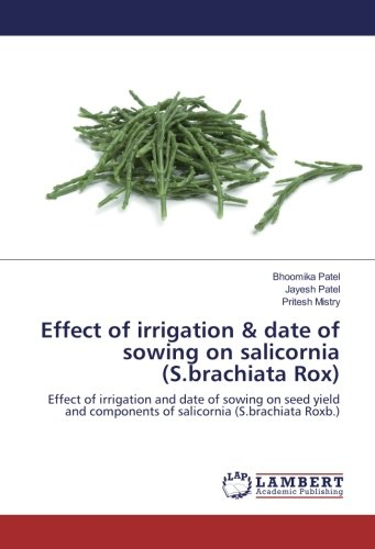 effect of irrigation & date of sowing on salicornia (s.brachiata rox): effect of irrigation and date of sowing on seed yield and components of salicornia (s.brachiata roxb.)