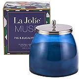 LA Jolie Muse Bougie parfumée Cire Naturelle Cadeau Décoratif Vacance Noël en Verre Bocal Grand 420g Candle Jar 105 Heures