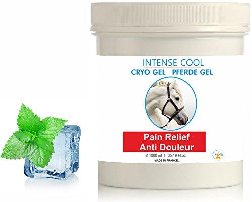 Intense Cooling Pferde Cryo Gel ● Kühlendes Gel 1000 ml (Die Türkei Geldbörse)