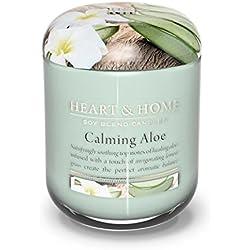 apaisant Aloe 115g parfumée Bougie en pot avec couvercle décoratif