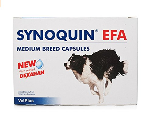 Synoquin Medium Breed – Dogs 10-25kg x 1