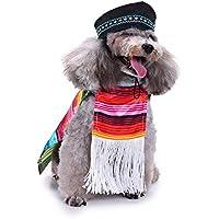 Ropa para Mascotas Invierno Abrigo Chaqueta Gusspower Juego de Ropa para Perros con Flecos, Sombrero Bordado y Cierre de Gancho