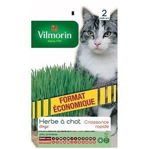 VILMORIN - Sachet Grand Modèle - Herbe à chat