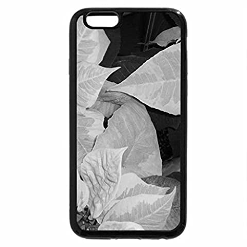 iPhone 6S Case, iPhone 6 Case (Black & White) - Marble Poinsettia