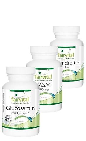 Arthro Protect Forte, 270 Kapseln, Gelenk-Komplex mit Glucosamin, Chondroitin, Collagen, Hyaluronsäure, MSM, Calcium, Vitamin D u. E - für geschmeidige Gelenke, gesunde Knorpel und starkes Bindegewebe