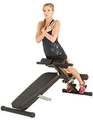 FITNESS REALITY X-Class Light Commercial Multi-Workout Hyperextension Bauch- und Rückentrainer