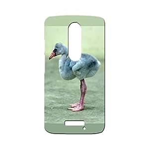 G-STAR Designer Printed Back case cover for Motorola Moto X3 (3rd Generation) - G1096