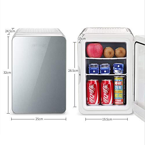418Kntxfz L - JCDZSW Mini termostato de refrigerador pequeño para automóvil de 10L, Apto para refrigerador de Piel, Alimentos, medicamentos, hogar y Viajes,Tyrantgold