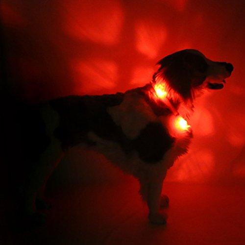 LED Leuchthalsband LEUCHTIE® Plus rot Größe 50 neues Verschlusssystem - 2