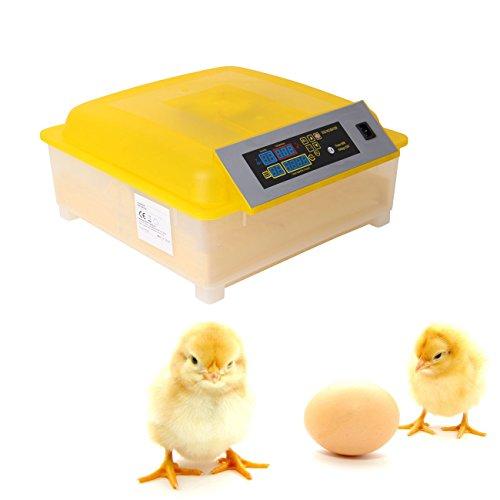 Ridgeyard 48 uova incubatrice digitale chiaro Hatcher temperatura controllo GIRAUOVA automatico - Uova Di Quaglia