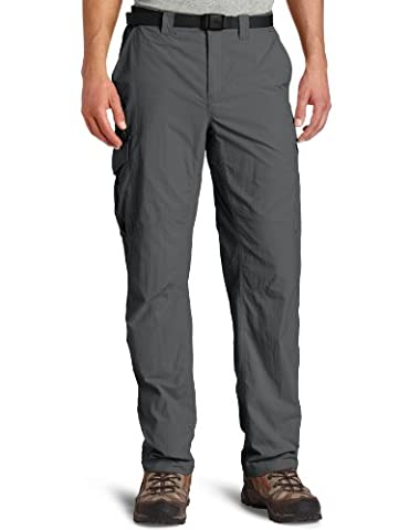 Columbia Men's Silver Ridge Cargo Pants - Grill, Size 34