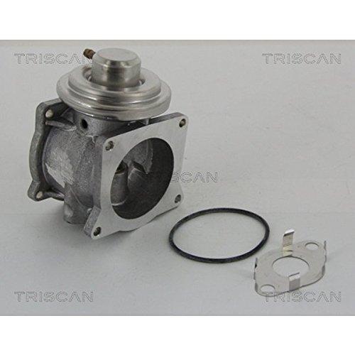 TRISCAN 8813 29301 AGR-Ventile
