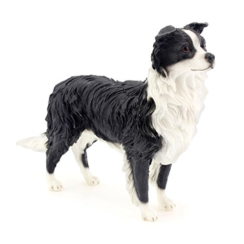 Leonardo Collection Border Collie Ornament Hund Figur, Stein, Schwarz (Collie Hund Figur)
