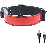 Glovion (TM) USB rechargeable Allumer Brassard sport Ceinture - La sécurité  et la visibilité 8cb4384c618
