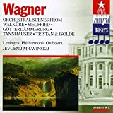 Orchestral Scenes From Walkure Siegfried Etc. [Import anglais]
