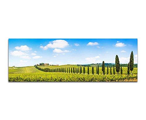 Paul Sinus Art Bilder Wand Bild - Kunstdruck 120x40cm Toskana Landschaft Weinberge Zypressen