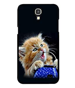 printtech Cute Kitten Eyes Back Case Cover for Samsung Galaxy Mega 2 , Samsung Galaxy Mega 2 G750F , Samsung Galaxy Mega 2 G7508 Samsung Galaxy Mega 2 Duos G7508Q for China with dual-SIM card slots