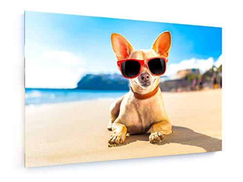 Chihuahua - 120x80 cm - Leinwandbild auf Keilrahmen - Wand-Bild - Kunst, Gemälde, Foto, Bild auf Leinwand - Tiere
