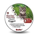 BINGPET Flea and Tick Collar for Cat - 8 Month Protection Adjustable Collar- Best Flea Control Treatment for Kitten