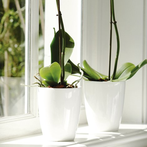 orchideentopf-brussel-diamond-gloss-weiss-oe-13-cm