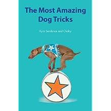 The Most Amazing Dog Tricks