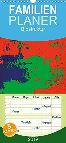 Biostruktur - Familienplaner hoch (Wandkalender 2019 , 21 cm x 45 cm, hoch): Die Zuordnung des menschlichen Typs nach Farben basiert auf dem Konzept ... 14 Seiten ) (CALVENDO Wissen)
