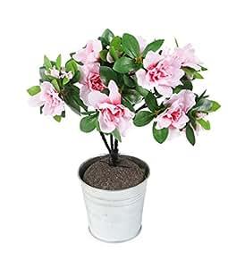 Closer to Nature HBC003PW 35 centimetri artificiale Azalea Plug Plant - Rosa Pallido