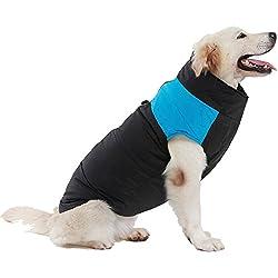 Chubasquero Moderno Perros Grandes Azul