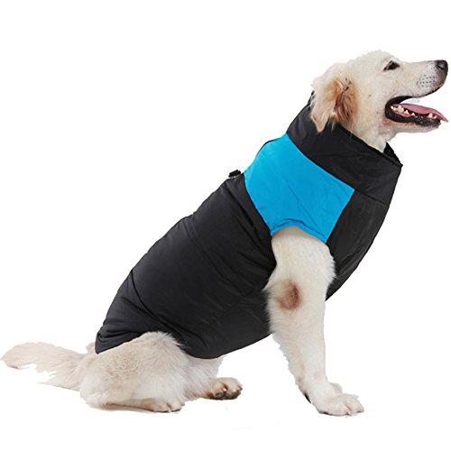 Treat Me Moderno Abrigo Chaqueta para Perros Mediano Grande Ropa para Perros Mediano de Invierno Chuabasquero para Perros Grande Azul L