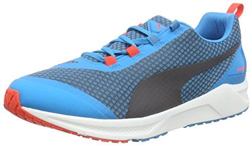 Puma Ignite XT Core, Chaussures de Course Homme Bleu (Atomic Blue/Black/Red Blast)