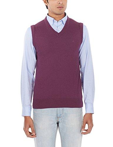 Arrow Sports Men's V-neck Wool Blend Sweater