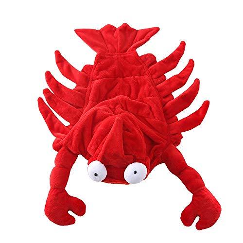 Hund Hummer verkleiden sich um lustige Teddy Halloween Kleidung Red Australian Lobster Tentacles mit Kapuze Designer-Klettverschluss Pet Kleidung Heimtierbedarf (Size : - Baby Hummer Kostüm