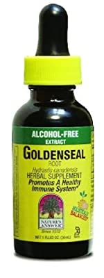 Nature's Answer Alcohol-Free Goldenseal Root, 1-Fluid Ounce by Nature's Answer from NATURE'S ANSWER