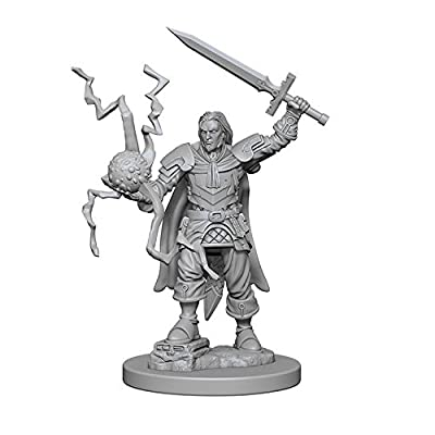 Pathfinder: Deep Cuts Unpainted Miniatures: Human Male Cleric