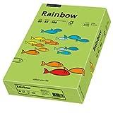 Rainbow Intensiv - A4, 80 g/qm, grün, 500 Blatt Premiumpapier mit exzellenter Laufeigenschaft, hoher Alterungsbeständigkeit und Farbechtheit sowie Spielzeugeignung. Für Laser-, Inkjetdrucker, Kopierer, Faxgeräte, Preprint oder Druck geeignet.